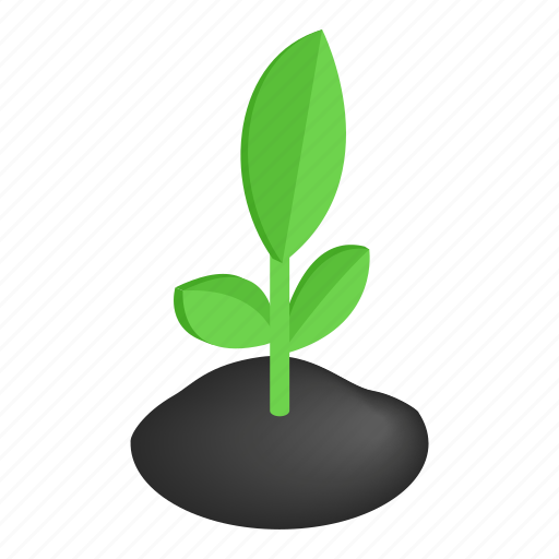 agriculture, grow, isometric, leaf, life, spring, sprout icon
