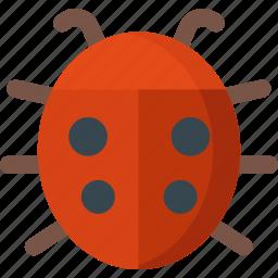 animal, beetle, bug, garden, insect, ladybug icon