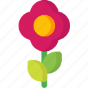 abstract, bloom, flower, flowers, garden, gardening, spring icon
