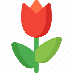 blossom, floral, flower, nature, plant, spring, tulip icon