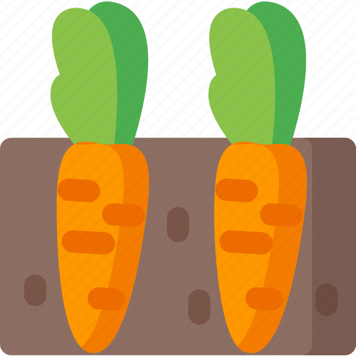 carrots, ecology, green, organic, plant, vegetable, vegetables icon
