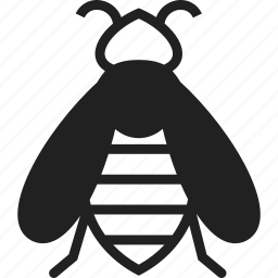 bee, honey bee, insect, pollenate icon