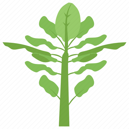 agriculture, gardening, nature, plant, plantation, sprout icon