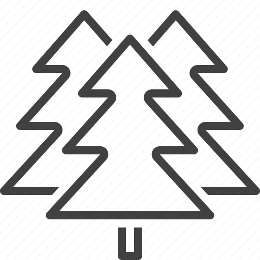 fir, forest, spruce, tree icon