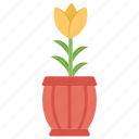 flower, flower pot, home decoration, house plant, plant, pot plant icon