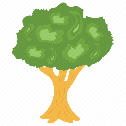 apple tree, deciduous tree, fruit tree, shrub tree, tree icon
