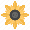 beauty, flower, garden flower, nature, sunflower icon
