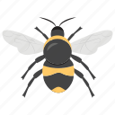 bee, fly, flying bee, honey bee, insect icon