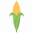 corn, corn cob, corn husk, gram, maize icon