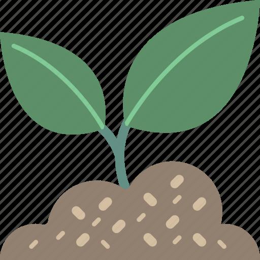 garden, gardening, grow, plant icon