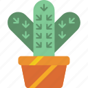 cactus, garden, gardening, grow, plant icon
