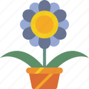 flower, garden, gardening, grow, plant icon
