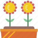 bed, flower, garden, gardening, grow, plant icon