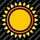 garden, gardening, grow, plant, sunflower icon