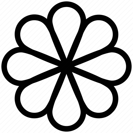 daisy, flower, flower petals, gardening, petals, planting icon