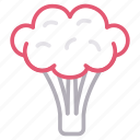 broccoli, eat, food, healthy, vegetable icon