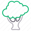 broccoli, food, fruit, healthy, vegetable icon