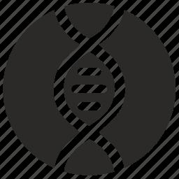 biology, code, dna, genome, helix, round icon