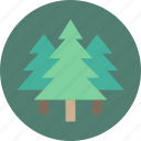 forest, geography, garden, tree, trees