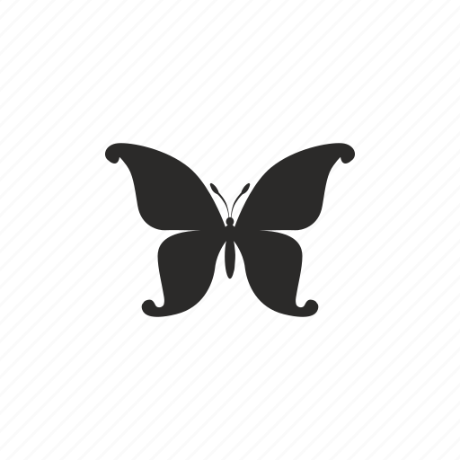 butterfly, swallowtail icon