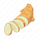 ginger, herbaceous, nature, plant, root, spice, tropical icon