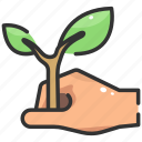 ecology, farming, growth, leaf, nature, plant, planting