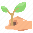 ecology, farming, growth, leaf, nature, plant, planting icon