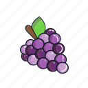 food, fruit, grapes, healthy, juice, organic, smoothie icon
