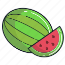 food, fruit, healthy, juice, organic, smoothie, watermelon icon