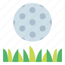 golf, grass, green, ground icon