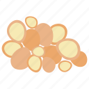 dried food, fruit, healthy diet, macadamia nuts, nutritionist food icon