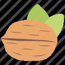 dried fruit, healthy food, healthy fruit, nutrition food, walnut icon