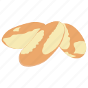 brazil nuts, diet food, healthy food, nutritionist food, sweet food icon