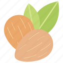 healthy food, sweet food, almond, dessert decoration, dried fruit icon
