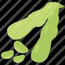 diet food, green vegetables, healthy food, soybeans, vegetable icon
