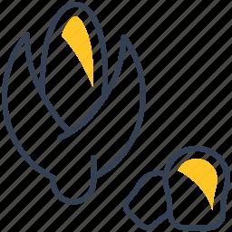 corn, food, wheat icon