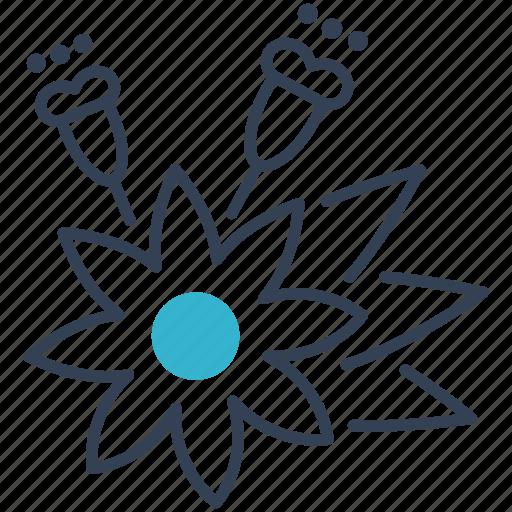 cumin, plant, seeds icon