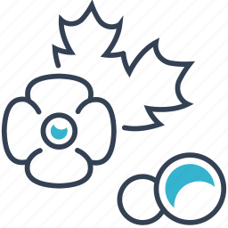 food, poppy, seed icon