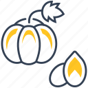 food, pumpkin, seed icon
