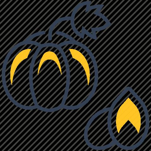 food, pumpkin, seed icon