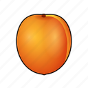 abricot, albaricoque, apricot, aprikose, cooking, food, fruit icon