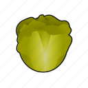 cooking, food, lettuce, salad, vegetable icon