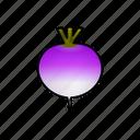 turnip, food, vegetable