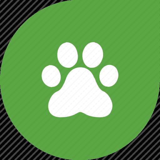 animal, eco, green, pet icon