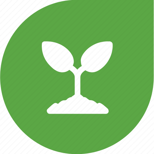 eco, green, plant, shape icon