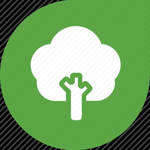 eco, green, plant, shape, tree icon