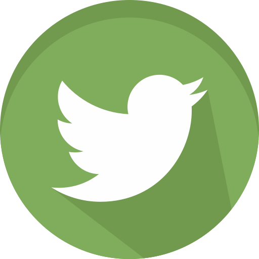 logotype, media, network, social, twitter icon