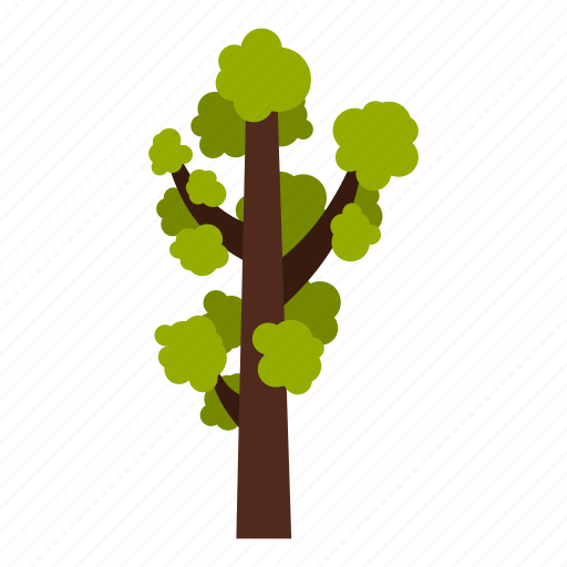 eco, ecology, leaf, nature, summer, tall, tree icon