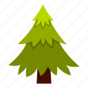 branch, eco, ecology, leaf, nature, spruce, summer icon