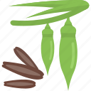 beans, food, greenery, sheet icon